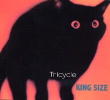 Tricycle CD jazz musique du monde